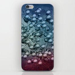 spheres and spheres -3- iPhone Skin