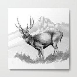 Rusa Deer Metal Print