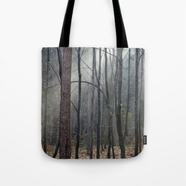 Magical winter light Tote Bag