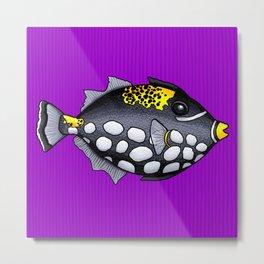 Clown Triggerfish Metal Print