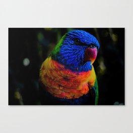 Colorful elegant Parrot Canvas Print