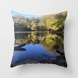 Scenic Lake Photo in Autumn Throw Pillow
