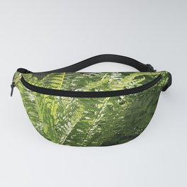 Ferns - leaves and shadows - against birch bark Fanny Pack