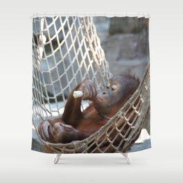OrangUtan_2014_1202 Shower Curtain