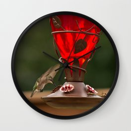Hummingbird Legend Wall Clock