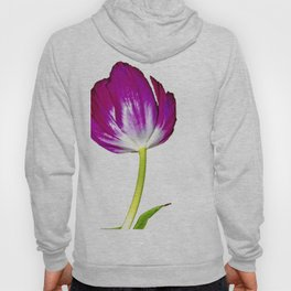 The Simplicity of Tulips Hoody