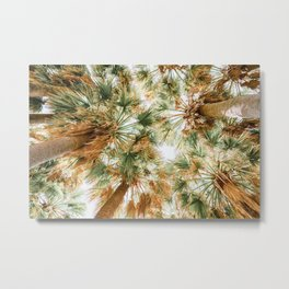 Tropical State Of Mind, Palm Trees Print, Travel Print, Summer Vibes, Cannes French Riviera, Palm Tree Coconut, Looking Up, Miami Trees, Home Decor, Exotic Print, Tropical Art Decor Metal Print