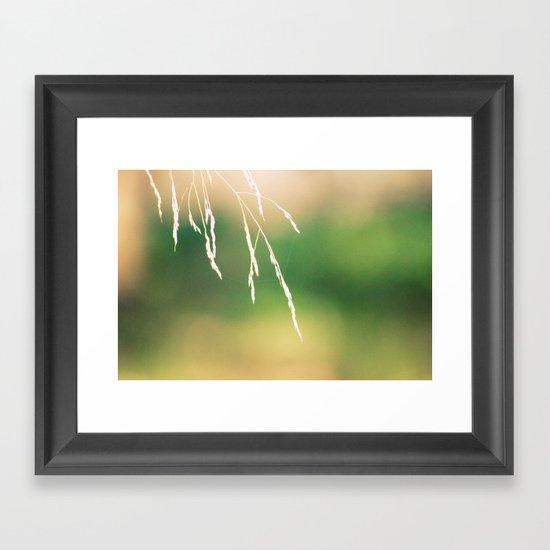 Nidi di ragni Framed Art Print
