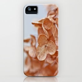 Autumn Hush iPhone Case