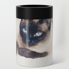 Siamese Cat Can Cooler