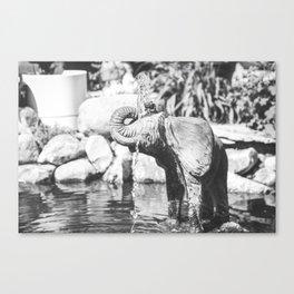 Elephant's Spout Canvas Print