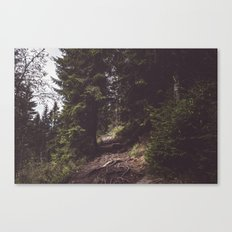 Back on the trail Canvas Print