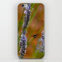 butt iPhone & iPod Skins featuring bumblebee butt by Lisa Carpenter