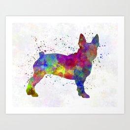 Boston Terrier 01 in watercolor Art Print