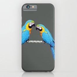 Macaw - Kakadu sitting on rope iPhone Case