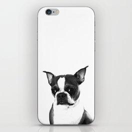 Distinguished iPhone Skin