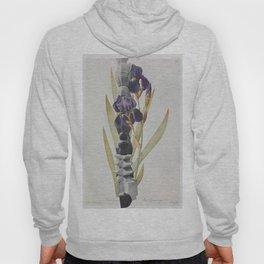 Brancusi Botanical  Hoody