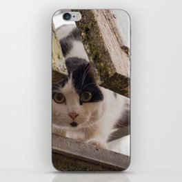 Who's There? iPhone Skin
