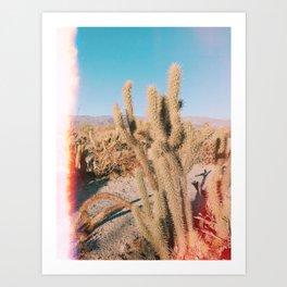 Desert Cactus Art Print
