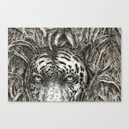 Bengal in Bamboo Canvas Print