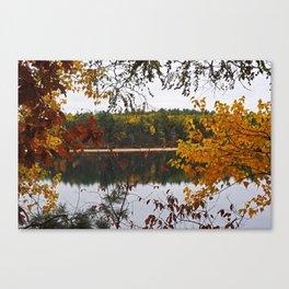 Walden Pond Fall Foliage Leaves Concord MA Canvas Print
