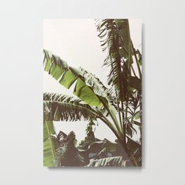 Tropical Winds Metal Print