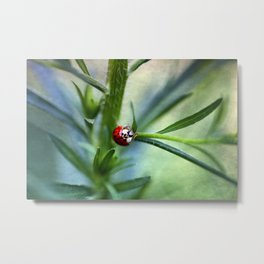 Lady Bird Metal Print