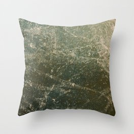 Earth View Throw Pillow
