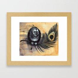 Owl Monkey Framed Art Print