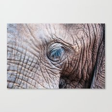 The Elephant Sanctuary 02 Canvas Print
