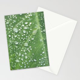 Misty Leaf Stationery Cards