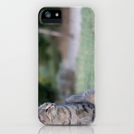 Composed iPhone Case