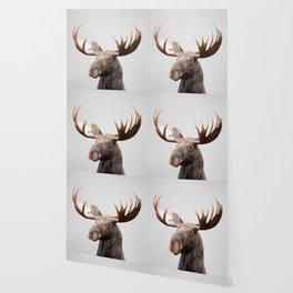 Moose - Colorful Wallpaper