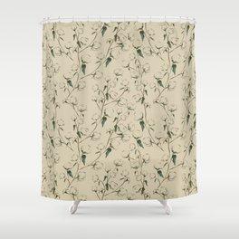Cotton Bolls Shower Curtain
