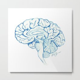 Brain in pencil Metal Print
