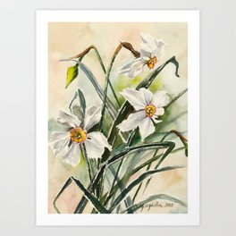 Daffodils Watercolor Painting Art Print