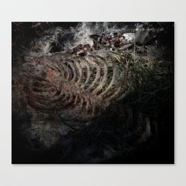 Carcass Canvas Print