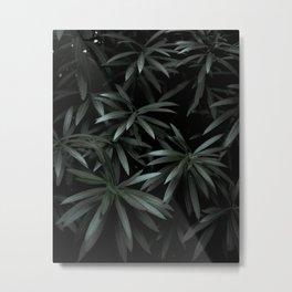 Leaves by Feifei Peng Metal Print