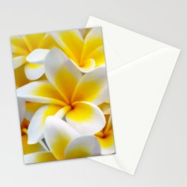 Frangipani halo of flowers Stationery Cards