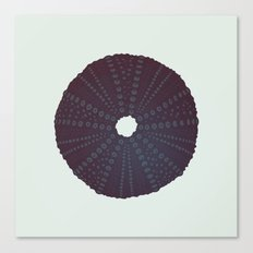 Sea's Design - Urchin Skeleton (Black) Canvas Print