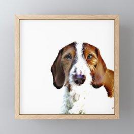 """Birch"" ~ Dachshund, Weiner Dog, Doxie, everywhere!  Framed Mini Art Print"