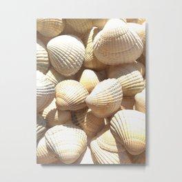 Sea Shells Collection Metal Print