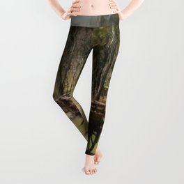 Wagon Wheels Leggings