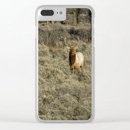 The Bull Elk Clear iPhone Case