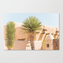 Marfa Oasis Canvas Print