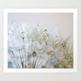 Gold and Silver Dandelion Art Print