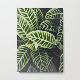 Jungle Botanicals Metal Print
