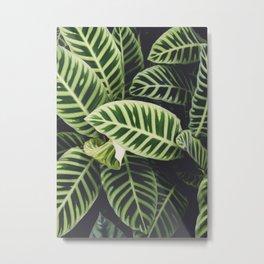 Jungle Botanicals Metal Print