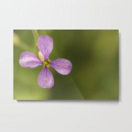 nature in purple Metal Print