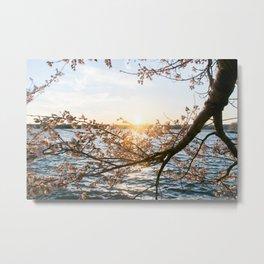 Sun Over the Horizon Metal Print